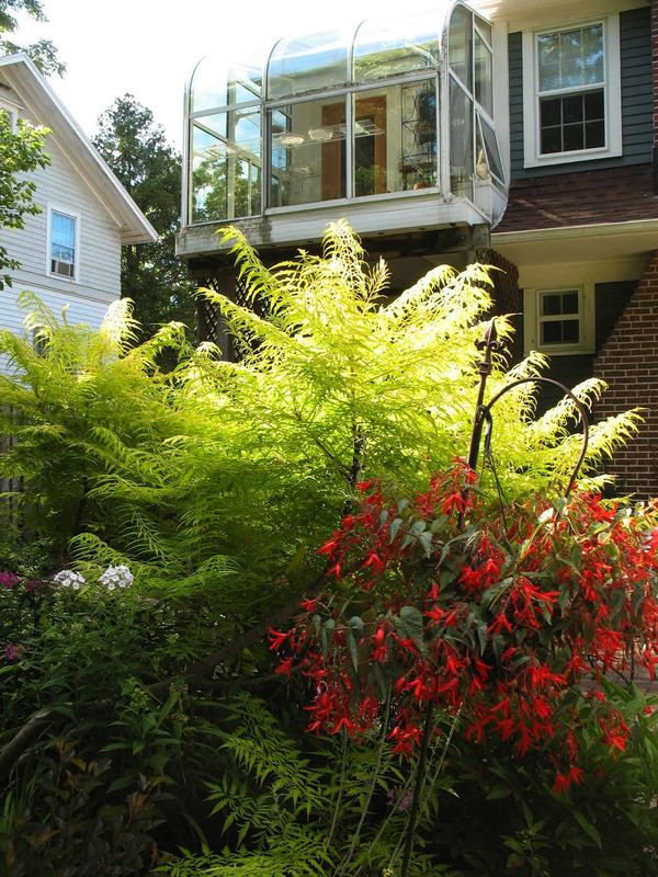 Each Little World: Olbrich Home Garden Tour 2014