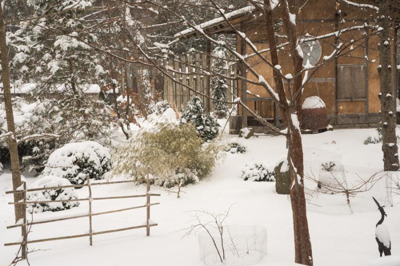 Snow Lantern-4