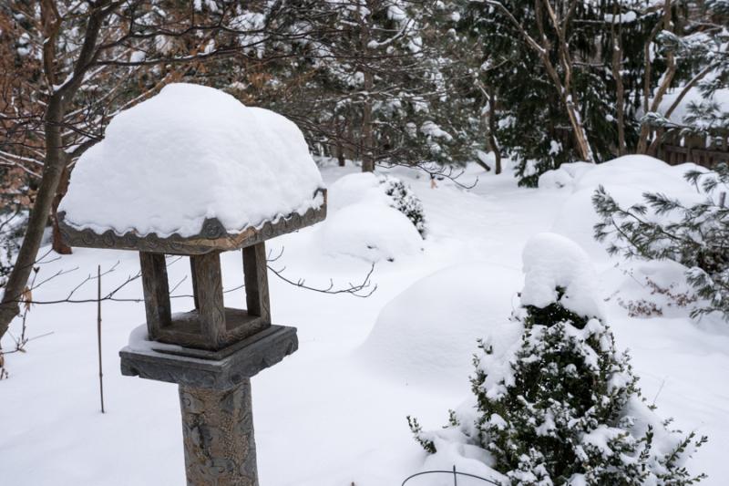 Egungun and Snow-23