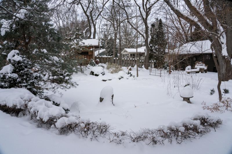 Egungun and Snow-34