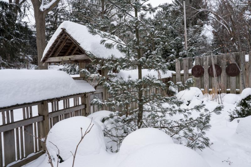 Egungun and Snow-28