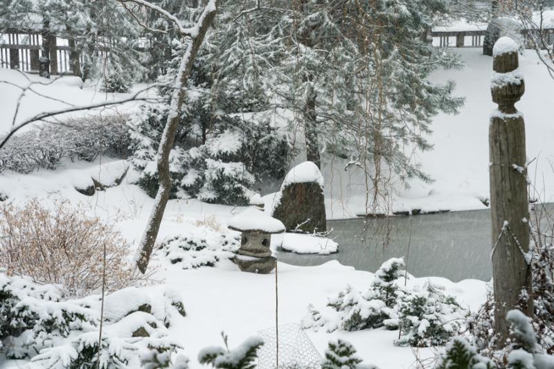 Last Snow-2