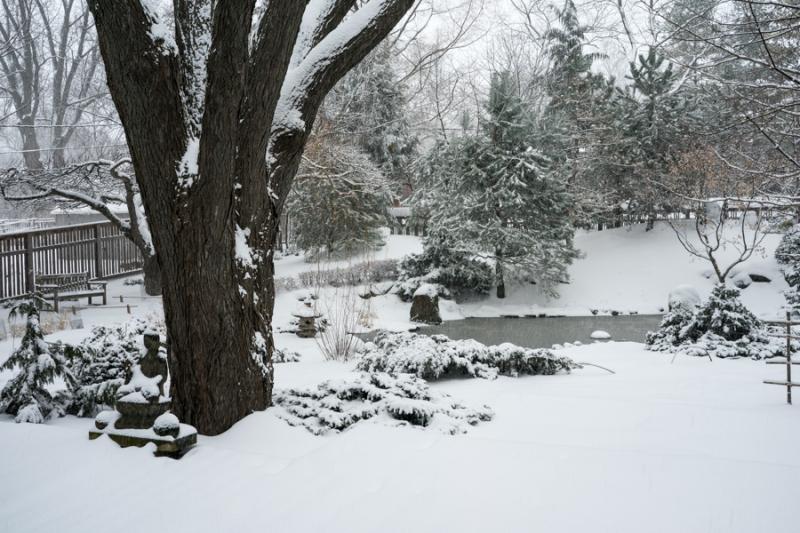 Last Snow-3