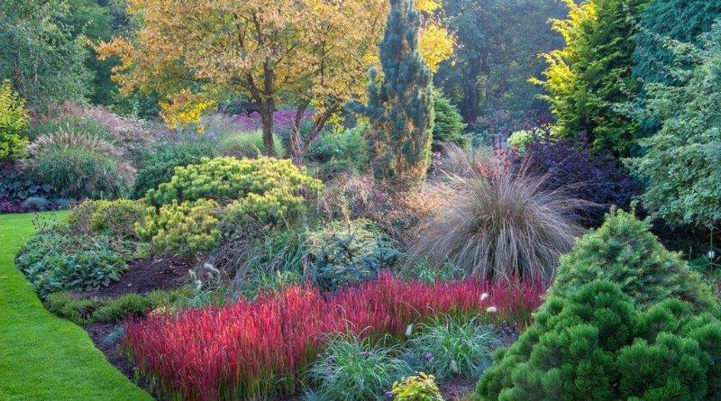 Foggy Bottom Garden