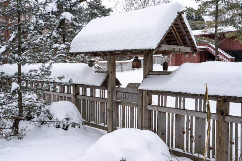 Egungun and Snow-24