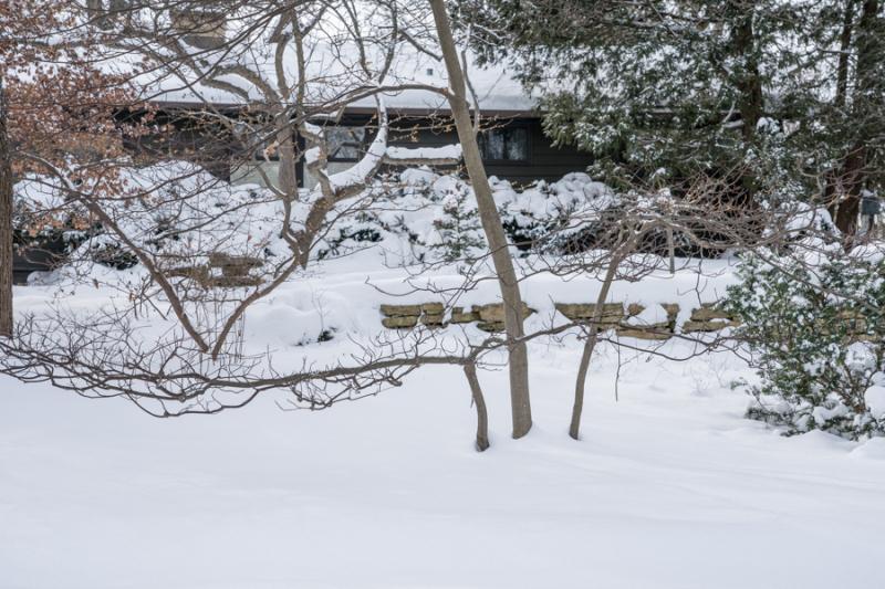 Egungun and Snow-40