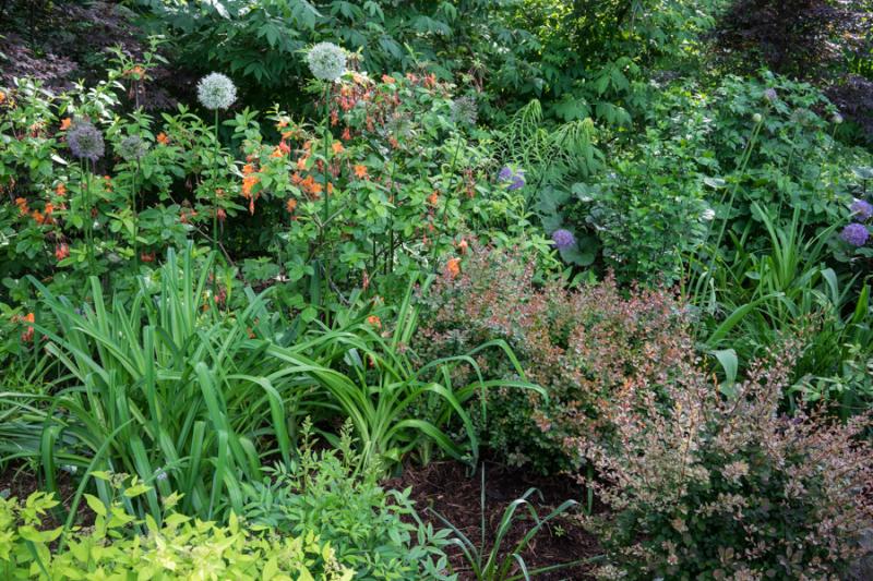HPS Gardens-4