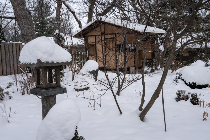 Egungun and Snow-27