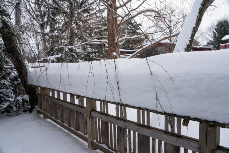 Egungun and Snow-31