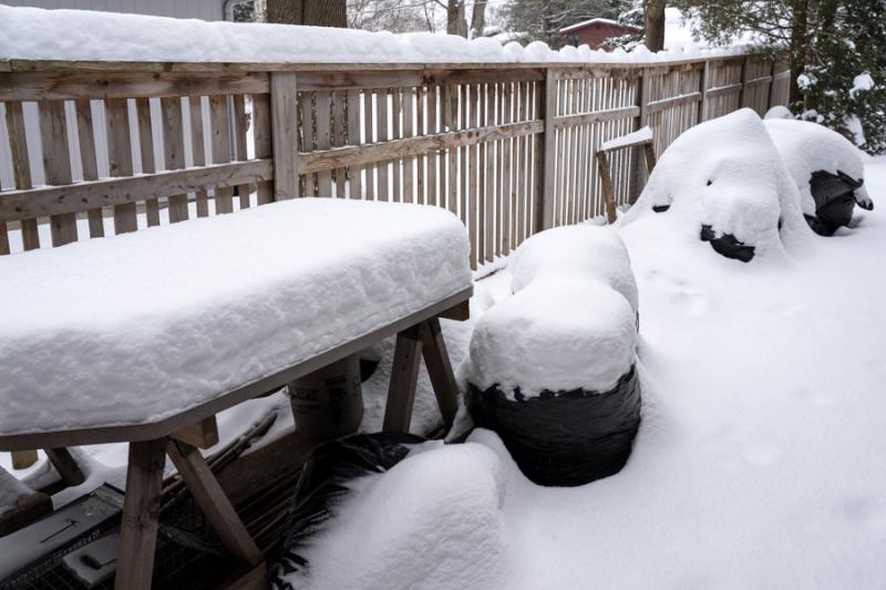 Egungun and Snow-15