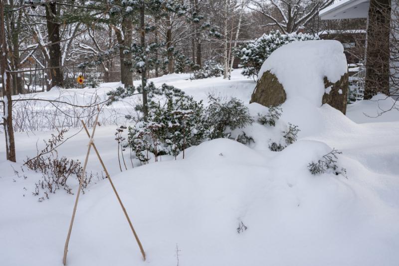 Egungun and Snow-38