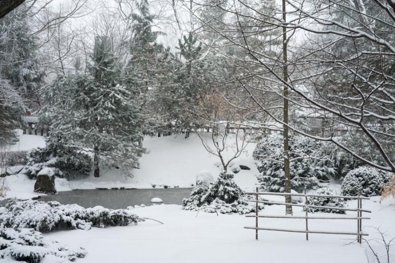 Last Snow-4