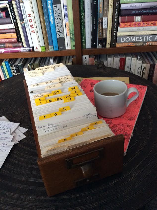 5805 garden index cards w: coffee