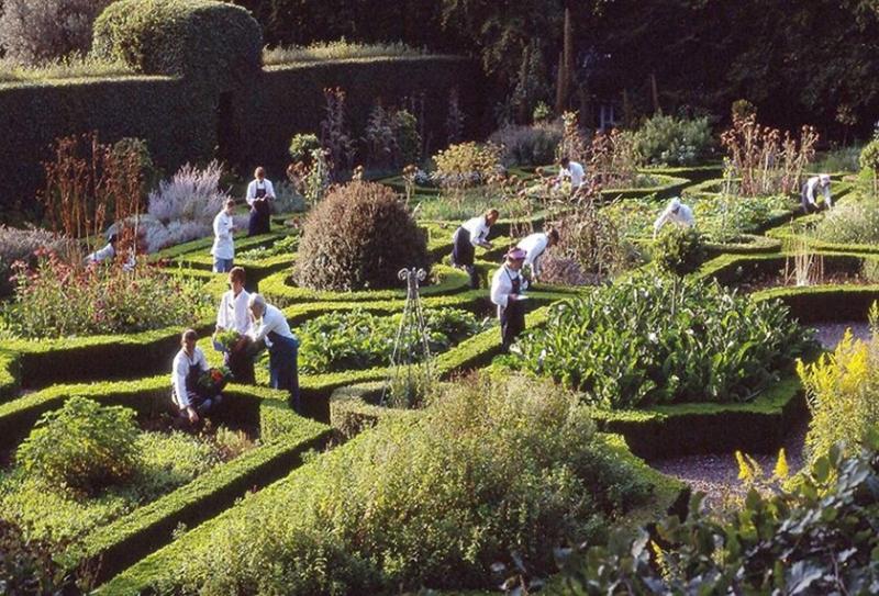 Ballymaloe-CS-Gardens