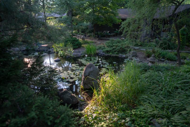 Evening in Garden-6