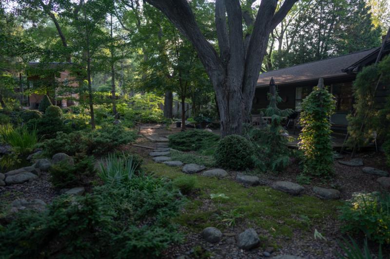 Evening in Garden-5