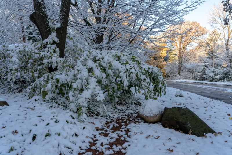 1st Snow 19-16
