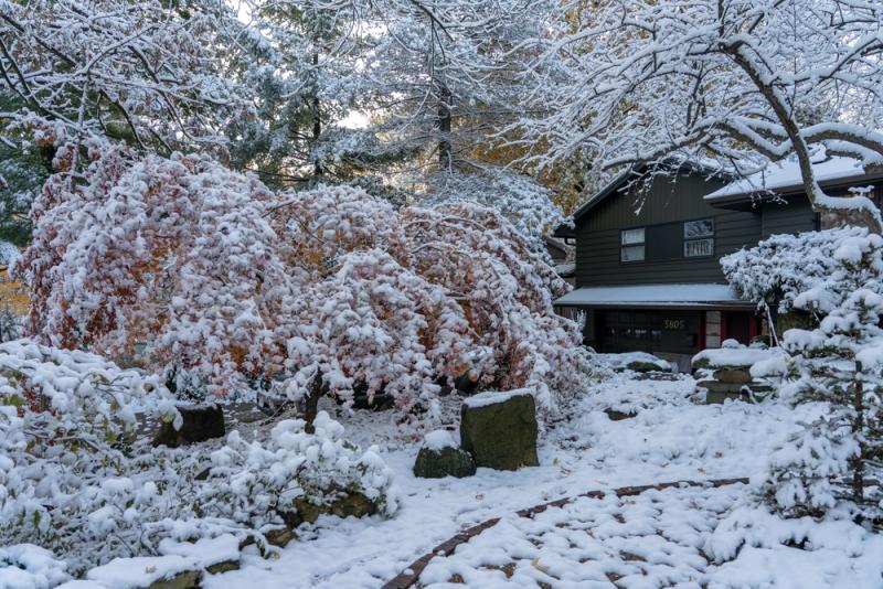 1st Snow 19-2