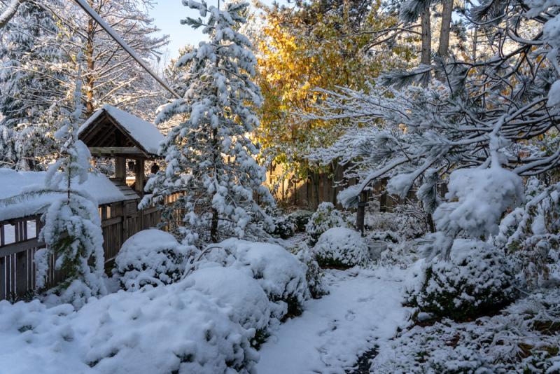 1st Snow 19-1