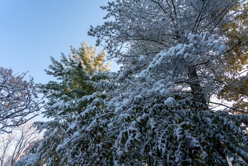 1st Snow 19-17