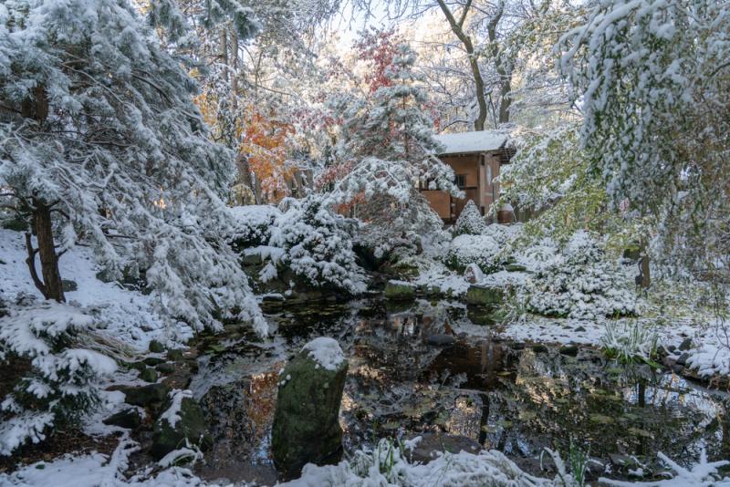 1st Snow 19-5