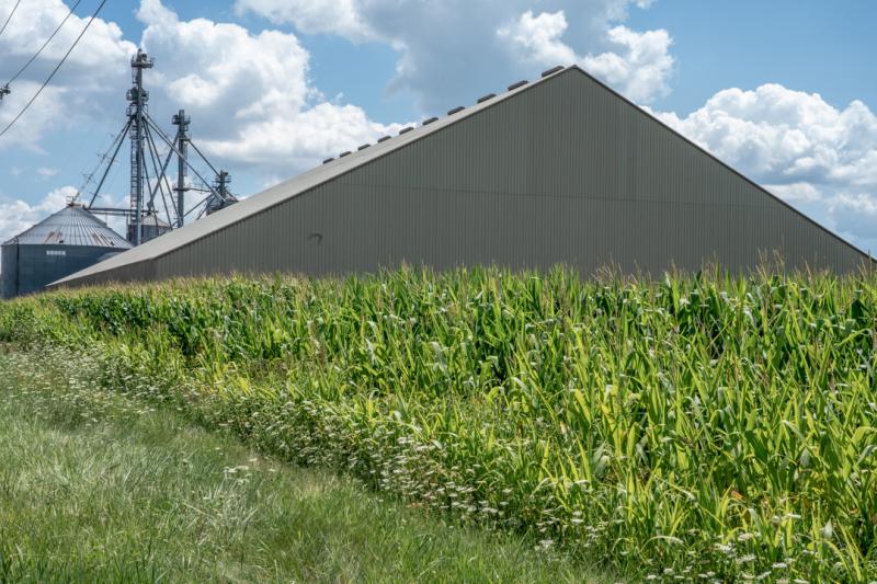 Corn-Gate-4