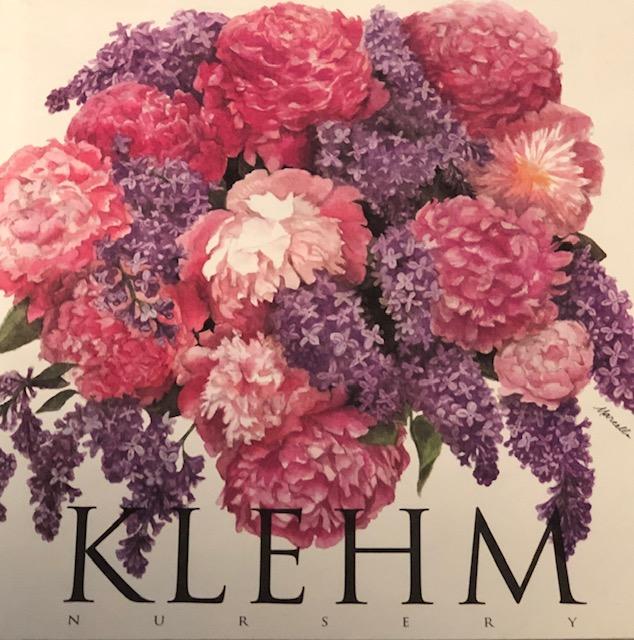 Klehm catalog 1995