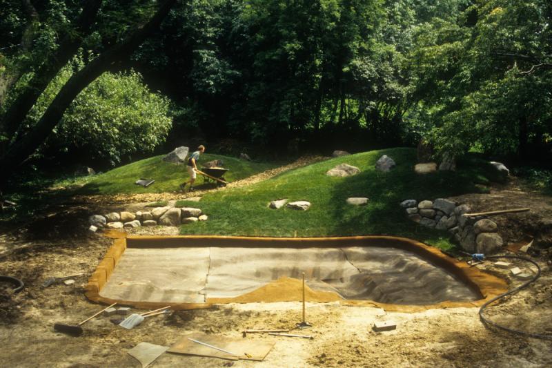 Pond Fill LB (3 of 63)