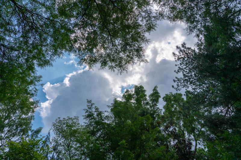 Sky Pics (2 of 4)