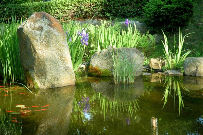 Pond Fill LB (12 of 63)